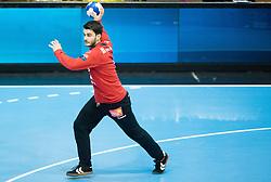 Emir Taletovic of Gorenje during handball match between RK Gorenje Velenje and HSV Hamburg (GER) in 8th Round of EHF Champions League 2014 on February 5, 2014 in Rdeca Dvorana, Velenje, Slovenia. Photo by Vid Ponikvar / Sportida