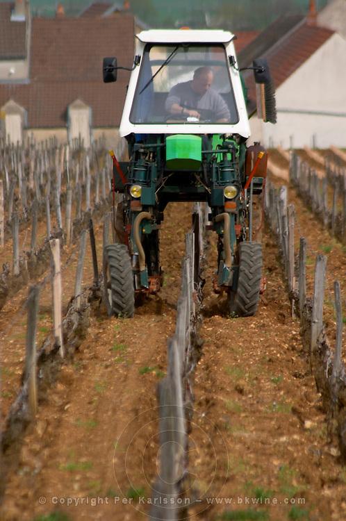 pinot noir working the soil vineyard romanee st vivant vosne-romanee cote de nuits burgundy france