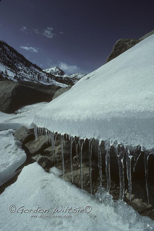 Ice along shore of Lake Sabrina.