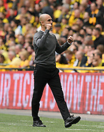 Manchester City manager Pep Guardiola celebrates the second goal scored by Gabriel Jesus (33) of Manchester City during the The FA Cup Final match between Manchester City and Watford at Wembley Stadium, London, England on 18 May 2019.