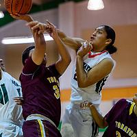 Wingate Bear Parrish Miller (20) blocks a shot by Tohatchi Cougar Ashtyn Burbank (34) Friday at Wingate High School.