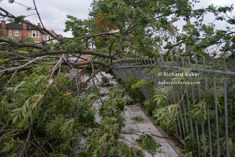 A fallen tree blocks a road in Herne Hill, south London as the worst of the storm winds sweeping southern Britain tears across this public park, blocking the suburban road and bending railings.