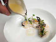 The scallops Thursday, May 1, 2014 at Topolobampo. (Brian Cassella/Chicago Tribune) B583702539Z.1 <br /> ....OUTSIDE TRIBUNE CO.- NO MAGS,  NO SALES, NO INTERNET, NO TV, CHICAGO OUT, NO DIGITAL MANIPULATION...
