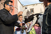 A Roman Catholic priest blesses a cowboy and his lamb during the annual blessing of the animals on the feast day of San Antonio Abad at Oratorio de San Felipe Neri church January 17, 2020 in the historic center of San Miguel de Allende, Guanajuato, Mexico.