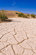 Cracked playa at Mesquite Flat Sand Dunes, Death Valley National Park. California