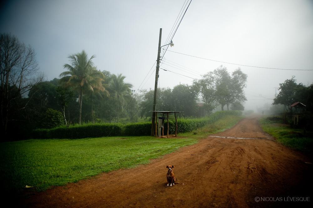 Boruca, Costa Rica, 2010