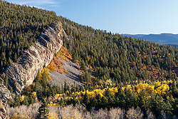 """""""The Wall"""" with aspens in fall color along Elk Creek , Vermejo Park Ranch, New Mexico, USA."""