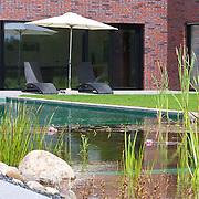 Modern Garden 914