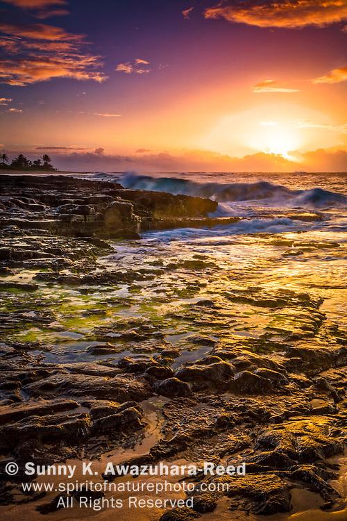 Wave crashing against rocks at sunrise. Tide pools reflect golden colors. Sandy Beach, Oahu Island, Hawaii.