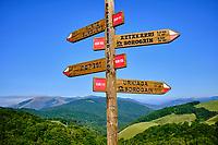 France, Pyrénées-Atlantiques (64), Pays Basque, Pays Quint // France, Pyrénées-Atlantiques (64), Basque Country, Kintoa,