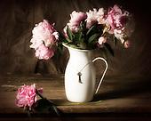 Plants,Flowers,Still Life