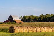 Hay Bales and Rustic barn near Tripp, South Dakota, USA