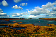 Landscape with salt marsh and cumulus clouds, Butley Creek tidal river, Suffolk, England, UK
