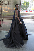 June 3, 2019-Brooklyn, New York-United States: Designer/Model Alek Wek attends the 2019 CFDA Fashion Awards Red Carpet held at the Brooklyn Museum on June 3, 2019 in the Brooklyn section of New York City. The most influential designers, editors and VIP's gather for one of the biggest awards shows in the fashion world.  (photo by terrence jennings/terrencejennings.com)