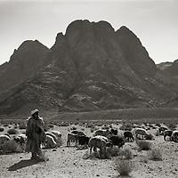 Jebel Musa