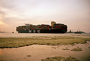 MSC containership at Port of Rotterdam