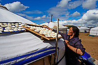 Mongolie, province de Tov, campement nomade, sechage du fromage // Mongolia, Tov province, nomad camp, cheese drying