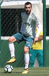 September 5, 2017 - O jogador Edu Dracena, da SE Palmeiras, durante treinamento, na Academia de Futebol. (Credit Image: © Cesar Greco/Fotoarena via ZUMA Press)