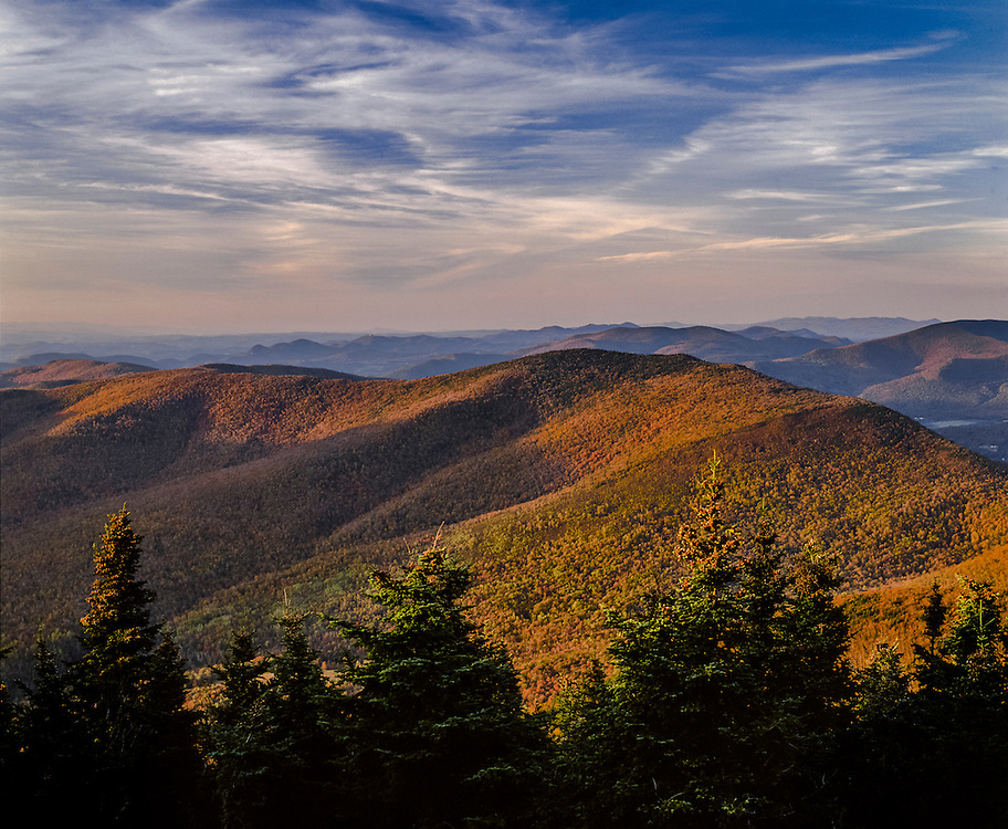 Green Mountain ridgelines in fall with spruce treetops, from Mt Equinox, Manchester, VT