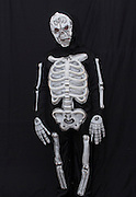 Young boy dressed up as a skeleton on black background