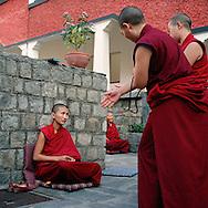 debating in Dolma Ling Nunnery