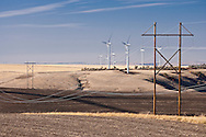 Electric power transmission lines cross wheat fields near electric generating windmills in the Palouse region of eastern Washington, USA