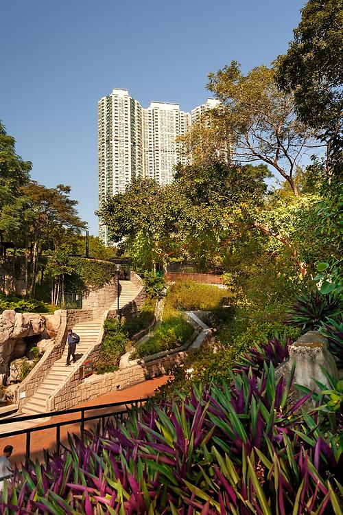 Tsim Sha Tsui., Kowloon, Hong Kong, China - People at Kowloon Park and skyline of apartment buildings at Tsim Sha Tsui.