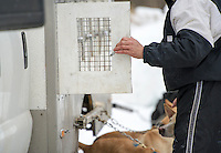 84th annual Laconia World Championship Sled Dog races open class series on Friday, March 1, 2013.  Karen Bobotas/for the Laconia Daily Sun