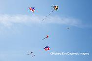 63495-02701 Kites flying at Flagler Beach Flagler Beach, FL