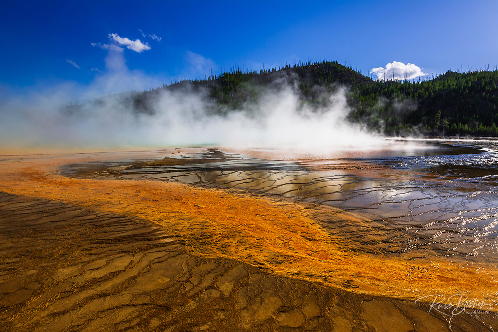 Steam rising off Grand Prismatic Spring, Yellowstone National Park, Wyoming USA