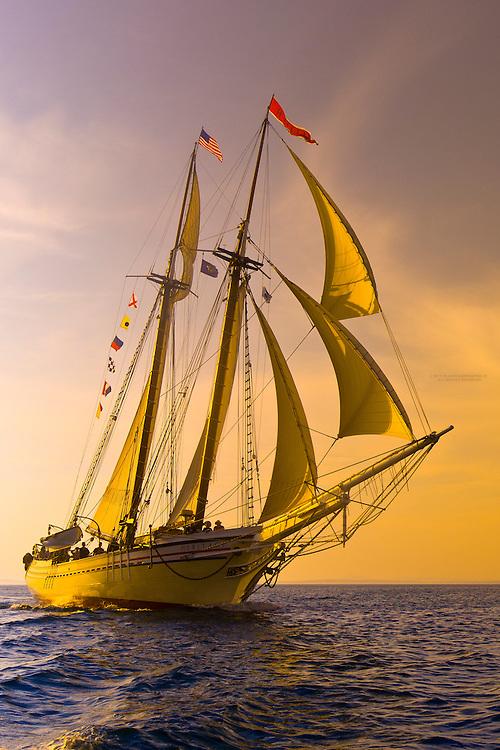 Schooner Heritage sailing into Pulpit harbor, Penobscot Bay, Maine USA