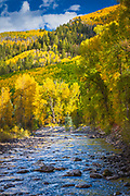 Aspens on hillside in the San Juan mountains of Colorado with small river in foreground