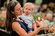 Pot plants for all ages on the D'Arcey and Everest stand - Press day at The RHS Hampton Court Flower Show.