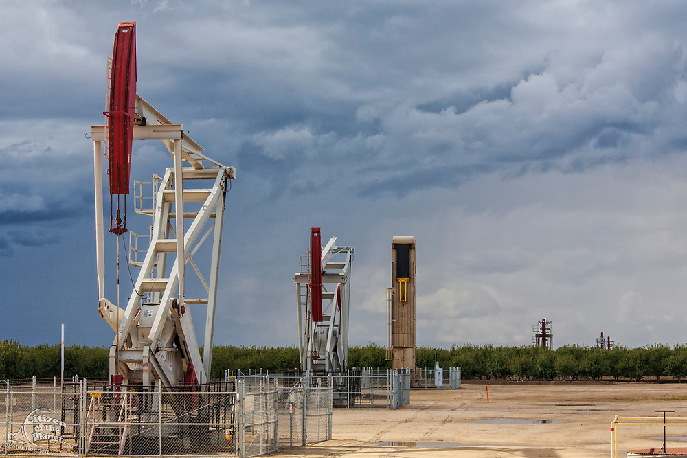 Oil well pumpjacks located in Almond Orchard. Kern County, located over the Monterey Shale, has seen a dramatic increase in oil drilling and hydraulic fracking in recent years. San Joaquin Valley, California, USA
