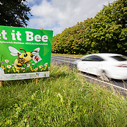 Let It Bee Verges