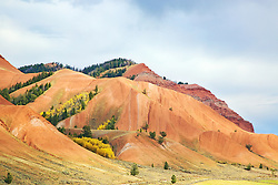 Autumn, Red Hills, Gros Ventre River Valley, Jackson Hole, Wyoming