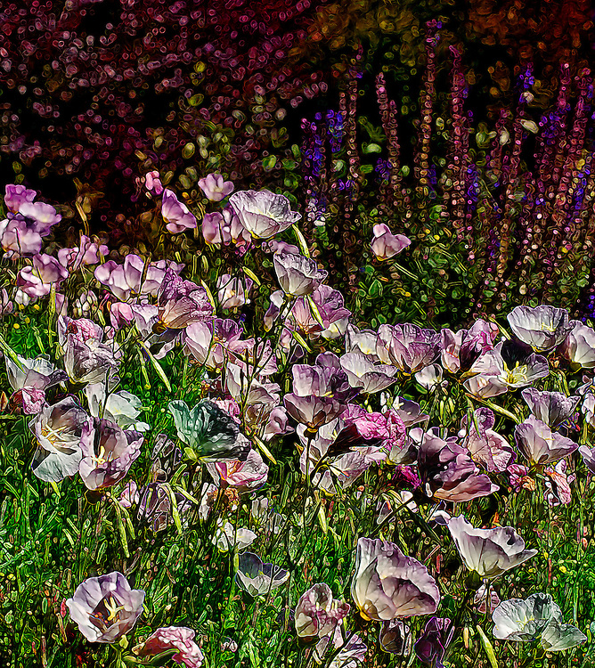 A field of flowers filled with colors and a bit of a textured pressed feel