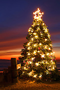Christmas Tree at the Crystal Cove Beach Cottages, Crystal Cove State Park, Newport Beach, Orange County, California.