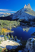 """Cathedral Peak reflects in Cathedral Lake, Yosemite National Park, California, USA. Cathedral Peak is the highest summit of the Cathedral Range, an offshoot of the Sierra Nevada Mountain in south-central Yosemite National Park in Tuolumne County. The sharp cathedral-shaped top of the peak was left uneroded as Pleistocene glaciers scraped its flanks smooth. The west peak (left side) of Cathedral Peak is called Eichorn Pinnacle, after Jules Eichorn, who first ascended a route (difficulty = YDS 5.4 ) in 1931. Published in """"Light Travel: Photography on the Go"""" book by Tom Dempsey 2009, 2010."""
