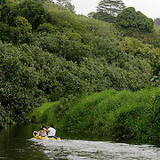 KAUAI, HI, July 14, 2007: A couple kayaks the Hanalei River en route to the Hanalei National Wildlife Refuge on the North Shore of Kauai (Photograph by Todd Bigelow/Aurora)