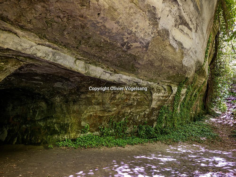 Chavannes-le-Chêne, 25 mai 2021. Le Vallon des Vaux, véritable canyon naturel, emmène le marcheur dans ses sous-bois agréablement ombragés jusqu'à la Tour St-Martin, seul indice d'une importante bourgade moyenâgeuse. Le sentier offre une diversité de paysage ainsi qu'un somptueux panorama sur le lac et le Jura. © Olivier Vogelsang