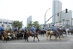 June 3, 2017 - San Diego, CA, USA - Cattle were walked through the streets of downtown San Diego as part of the San Diego County Fair's Where the West is Fun theme.  The only opposition to the event were a handful of animal rights protesters. The fair opened June 2nd and runs until July 4th. (Credit Image: © John Gastaldo via ZUMA Wire)