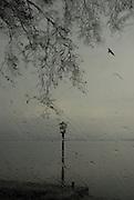 Ελευθερία<br />  <br /> Kastoria 2009