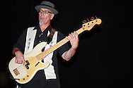 Steve Ehrmann (Bass Guitar) - Delta Rhythm Kings - Delta Rhythm Kings in concert with Roy Rogers, Triple Door, Seattle, WA, USA