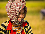 27 FEBRUARY 2015 - PONHEA LEU, KANDAL, CAMBODIA:  A girl working in the rice field during the rice harvest in Kandal province, Cambodia. Kandal province is an agricultural province north of Phnom Penh.   PHOTO BY JACK KURTZ