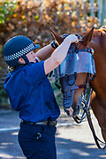 MET Police prepare their horses in a car park in Pencester Road in Dover, Kent ahead of warnings announced for a rival far-right and pro-migrant groups preparing to descend on the coastal town on Saturday, Sept 5, 2020. fears of violence against the refugees announced by far-right groups who are expected to assemble to demonstrate over migrant crossings. Pro-migrant protesters are already gathered in the town on Saturday amid a heavy police presence. Dover MP Natalie Elphicke has urged people to stay away from the protests given the backdrop of the Covid-19 pandemic. British media reports say that on Friday, an activist group projected pro-immigrant messages onto the White Cliffs of Dover ahead of the protests saying 'Rise above fear. Refugees welcome' (VXP Photo/ Vudi Xhymshiti)