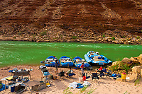 Whitewater rafting trip (oar trip) on the Colorado River in Marble Canyon camping at Salt Water Wash, Grand Canyon National Park, Arizona USA