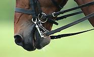 Tattersalls Horse Trials 300514