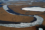 Permafrost tundra, Kolyma delta, Siberia, Russia