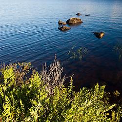 Umbagog Lake as seen from Umbagog Lake State Park, Cambridge, New Hampshire.
